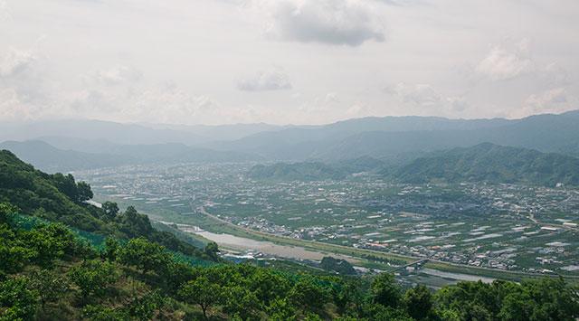 みかんの町、和歌山県有田郡有田川町